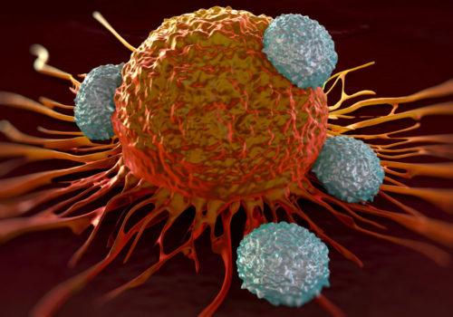 Krebs: Antibiotika können Checkpoint-Inhibitoren wirkungslos machen