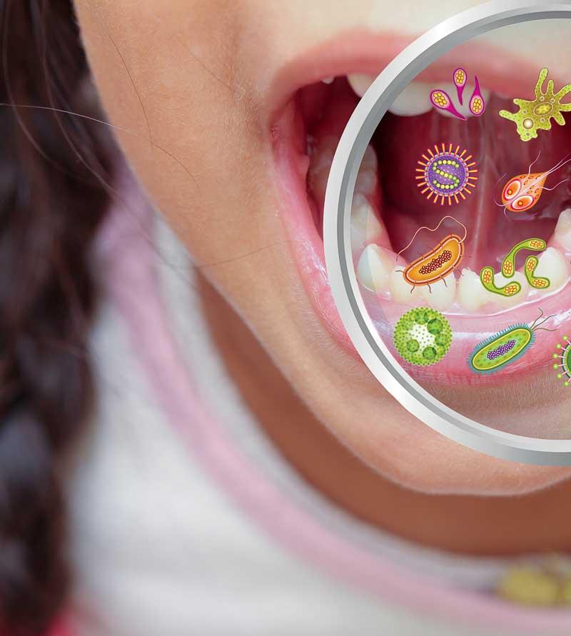 Mundmikrobiom - diese wichtige Rolle spielt es bei der Immunabwehr