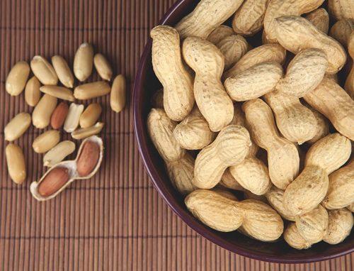 Probiotika und Erdnussallergie