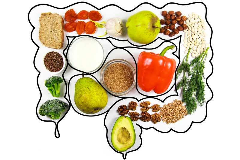 Gesunder Darm gesunde Ernährung